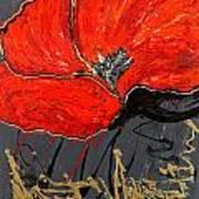 Poppy 43 Art Print