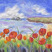 Poppy Beach Art Print