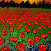 Poppy Carpet  Art Print