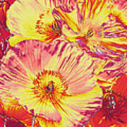 Poppy Extravaganza Art Print