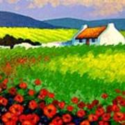Poppy Field - Ireland Art Print by John  Nolan
