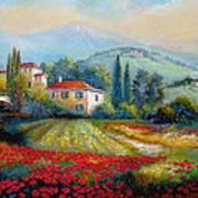 Poppy Fields Of Italy Art Print