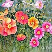 Poppy Garden Art Print