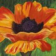 Poppy Number 2 Art Print