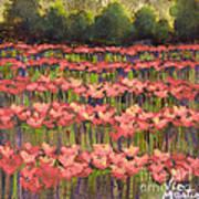 Poppy Romance Art Print
