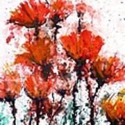Poppy Splashes Art Print