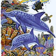 Porpoise Reef Art Print