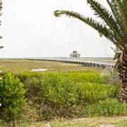 Port Lavaca Migratory Bird Stopover Art Print