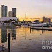 Port Of Miami At Sunset Art Print