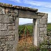 Portal Of Vineyard In Burgundy Near Beaune. Cote D'or. France. Europe Art Print