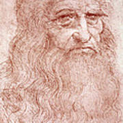 Portrait Of A Bearded Man Art Print by Leonardo da Vinci