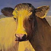 Portrait Of A Cow Art Print