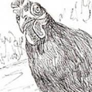 Portrait Of A Little Black Chicken Art Print