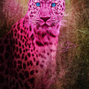 Portrait Of A Pink Leopard Art Print