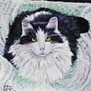 Portrait Of Pj Art Print