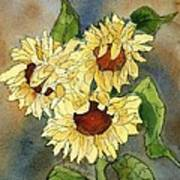 Portrait Of Sunflowers Art Print