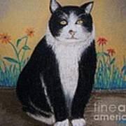 Portrait Of Teddy The Ninja Cat Art Print