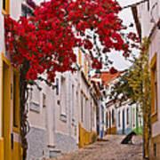 Portuguese Back Street Art Print