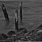 Posts In The Water Art Print