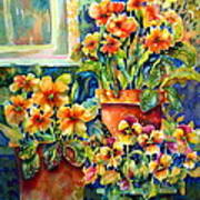 Potted Pansies II Art Print by Ann  Nicholson