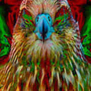 Power Hawk 1 Art Print by Colleen Cannon