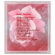 Prayer Of St. Francis And Pink Rose 2 Art Print