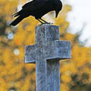 Praying Crow On Cross Art Print