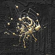 Precious Splashes - 4 Of 4 Art Print