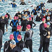 Preparing For The Swim Art Print