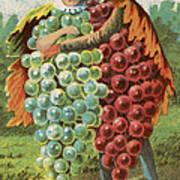 Pressed Grapes Art Print