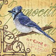 Pretty Bird 4 Art Print