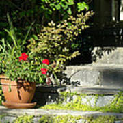 Pretty Gardens Art Print