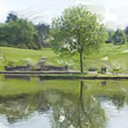 Pretty Tree In Park Picture.  Art Print