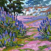 Pride Of Madeira Art Print