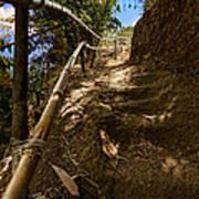 Primitive Stairway Art Print by Mario Legaspi
