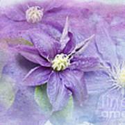 Profusion Of Purple Art Print