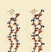 Protein Beta Sheets Art Print