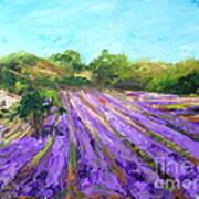 Provence Corner 2 Art Print