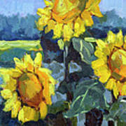 Provence Sunflower Trio Art Print