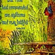 Psalm 119 138 Art Print