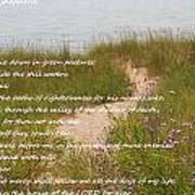 Psalm 23 Path  Art Print