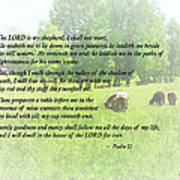Psalm 23 The Lord Is My Shepherd Art Print