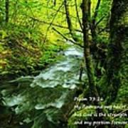 Psalms 73-26 Art Print