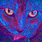 Psychedelic Kitty Art Print
