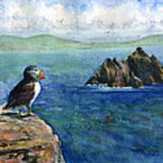 Puffin At Skellig Island Ireland Art Print