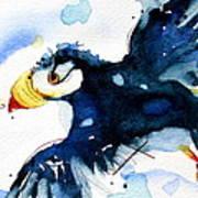 Puffin Flight Art Print