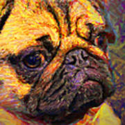 Pug 20130126v1 Art Print by Wingsdomain Art and Photography