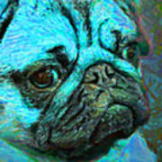 Pug 20130126v5 Art Print by Wingsdomain Art and Photography
