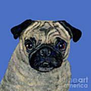 Pug On Blue Art Print