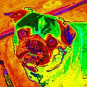 Pug Portrait Pop Art Art Print